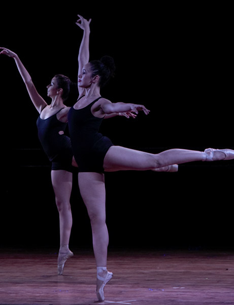 Online Ballet Classes in Mumbai The Dance Worx
