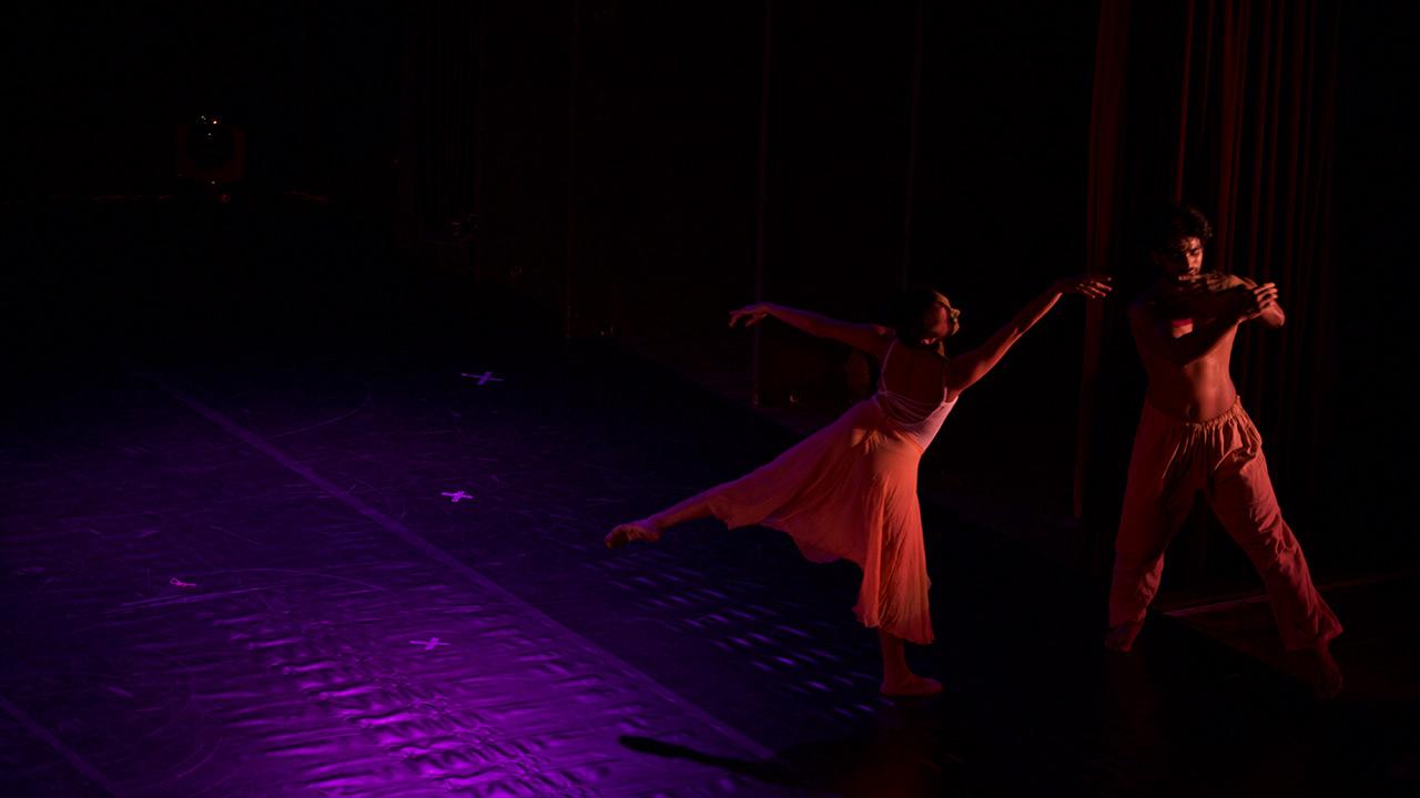 Online Ballet Dance Acadamy in India | The Dance Worx