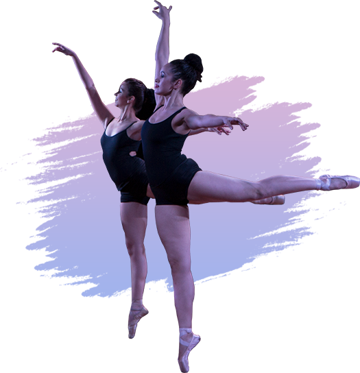 Online Ballet Dance Classes in Mumbai The Dance Worx
